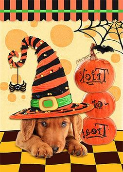 Morigins Happy Halloween Hat Dog Trick Or Treat Double Sided